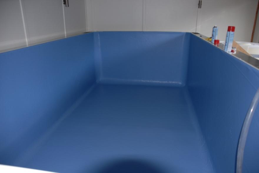 Endless Pool Room Case Study 5110